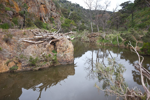 junction pool in werribee gorge