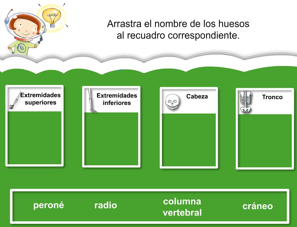http://www.primerodecarlos.com/SEGUNDO_PRIMARIA/julio/activi_bromera/natura2/3/Natura2-U3-A3_cas.swf