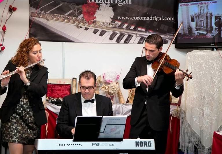 Trio Instrumental - Vocal