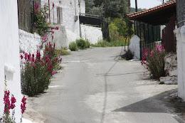 foto: ΒΑΙΟΣ ΤΣΕΛΙΟΣ
