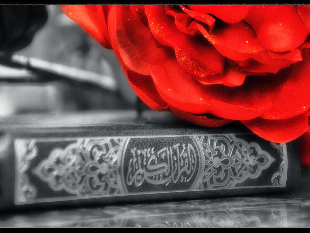 Best view Quran and Flower red Islamic Wallpaper