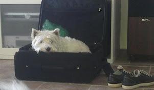 Emma on eri mieltä kuka menee viikonloppumakalle