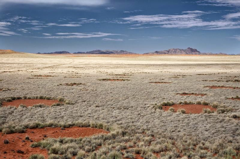 Fairy Circles in the Namib Rand Nature Reserve.