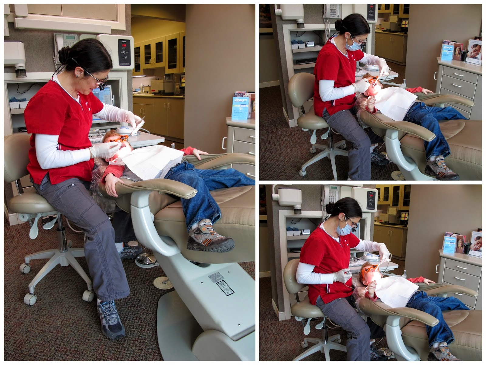 Getting Porter's Teeth Cleaned