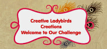 Creative Ladybirds Blog Hop