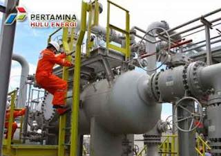 PT Pertamina Hulu Energi (PHE)