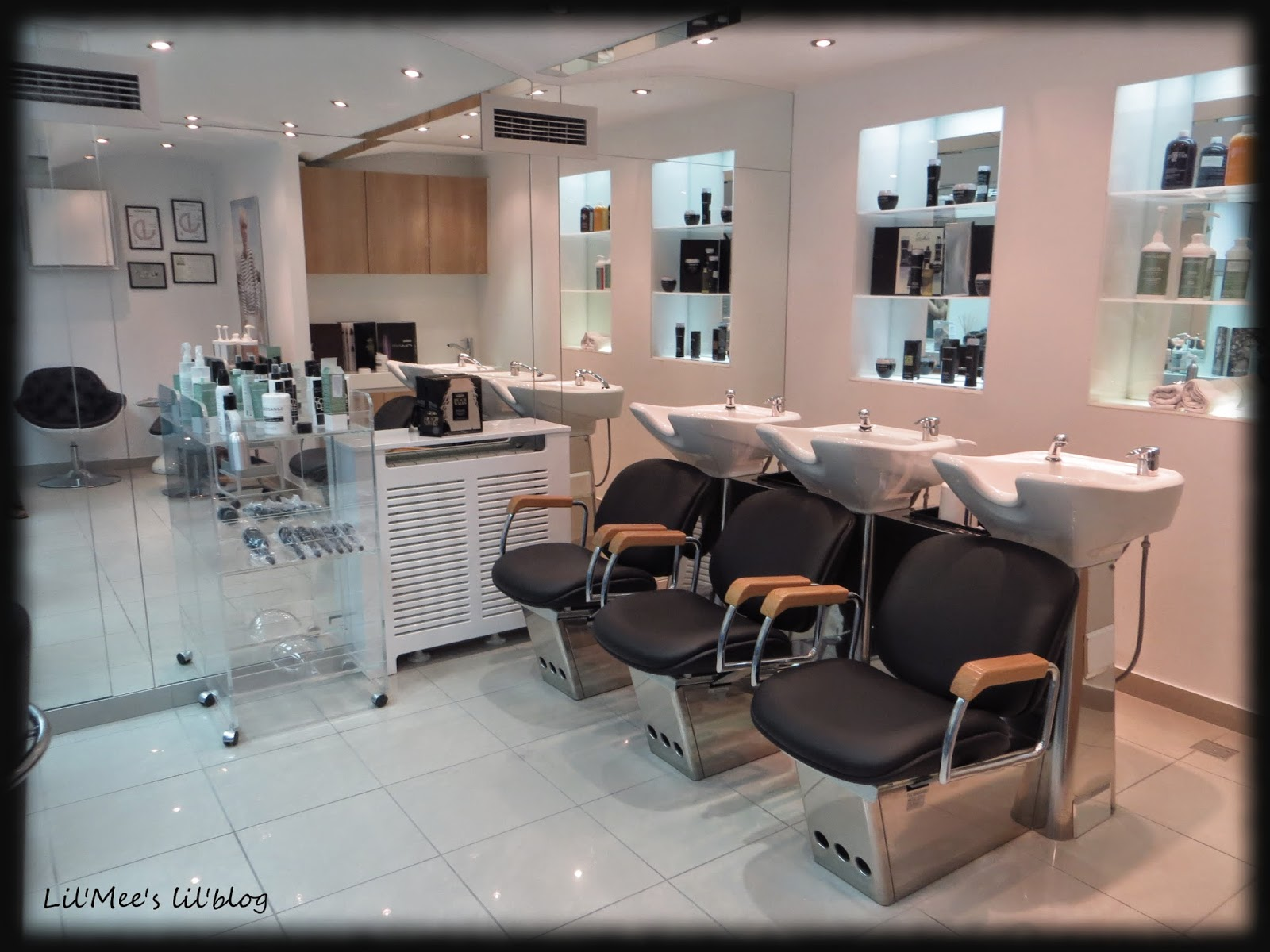 Lil 39 mee 39 s lil 39 blog hair spa tretman u frizerskom salonu for Dessange hair salon
