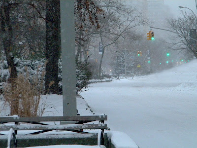 Snow Storm New York City free images