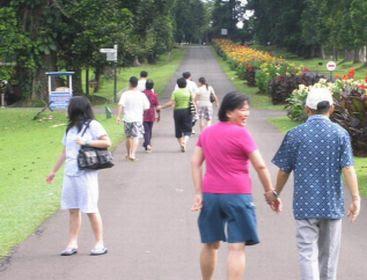 olahraga, jalan_kaki, jalan_sehat, Mengurangi Resiko Terserang Penyakit Jantung
