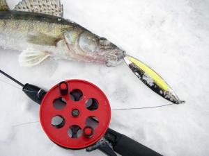 Рыбалка судака зимой