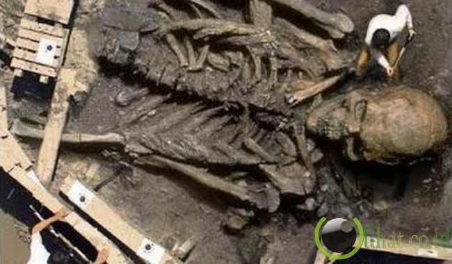 Fosil Raksasa