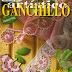Revista: Ganchillo Artistico 357