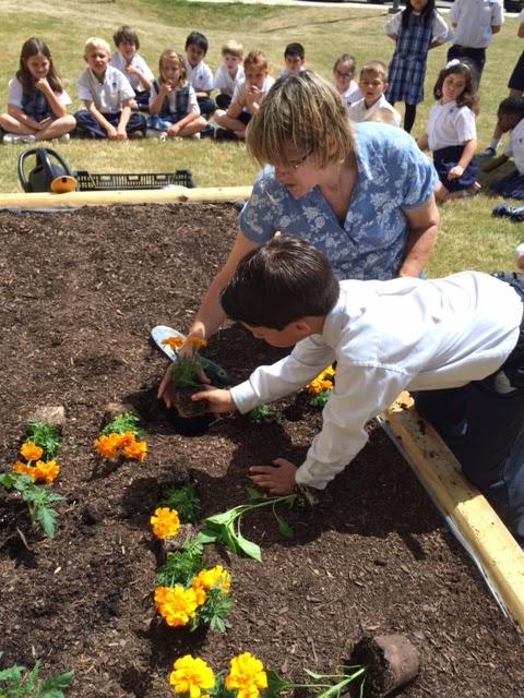 Montgomery Catholic First Grade Students Build Campus Garden 3