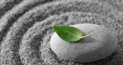 http://3.bp.blogspot.com/-fqjkIoZyivE/T-y_xzvncDI/AAAAAAAAAH4/BvESwNih3OU/s1600/mindfulness.jpg