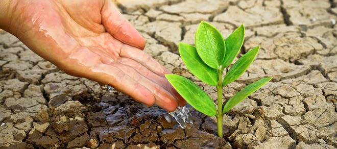 Artigo que apresenta o papel da publicidade diante a crise hídrica brasileira.