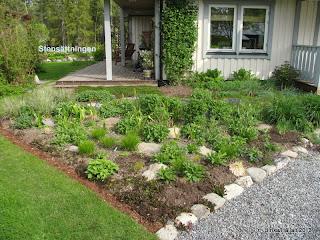 Planteringar/Gräsplanteringen