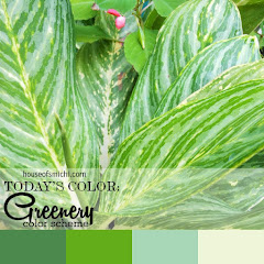 COLOR THERAPY - HoS Color of the Week