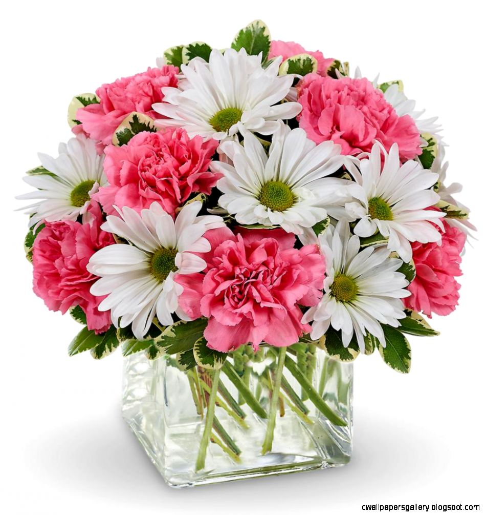 Daisy Dreams Bouquet  Avas Flowers