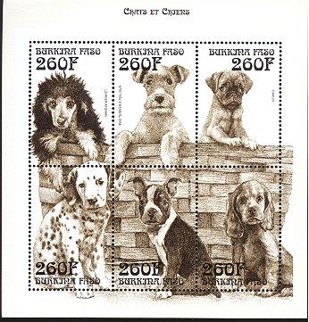 1999年ブルキナファソ アフガン・ハウンド フォックス・テリア パグ ダルメシアン ボストン・テリア コッカー・スパニエルの切手シート