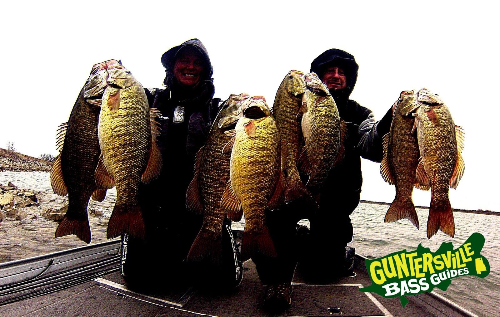 guntersville fishing report Lake Guntersville Fishing Report: Guntersville Bass Guides | Alabama ...
