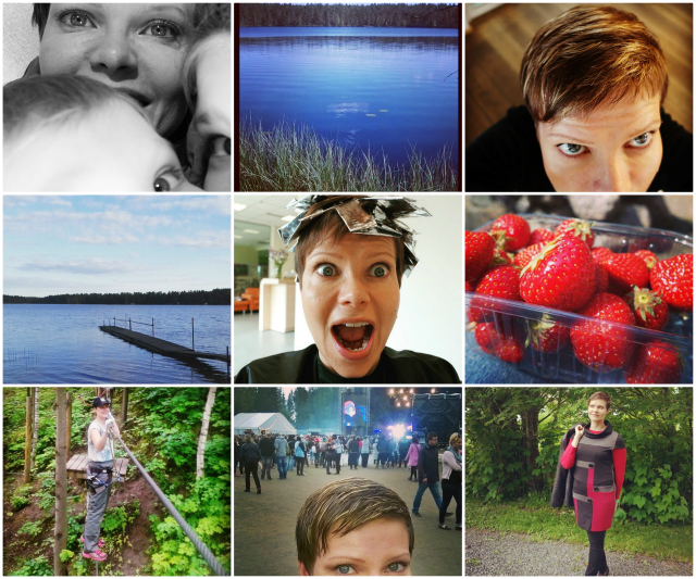 Collage of June by www.ruuhkavuodet.net