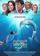 La gran aventura de Winter el delfín (Dolphin Tale) (2011) [Latino]