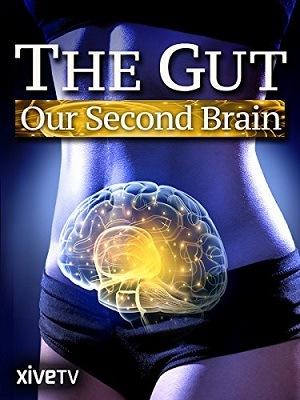 O Intestino - O Nosso Segundo Cérebro Legendado Torrent