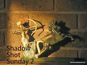 http://shadowshotsunday2.blogspot.com/