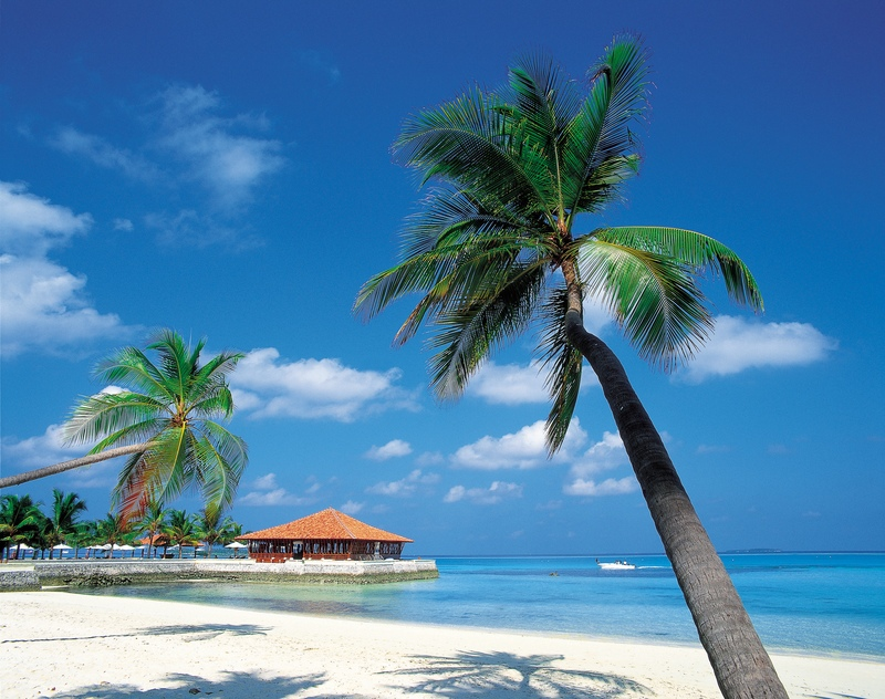 Caribbean Islands Hotels Dubai Wallpaper