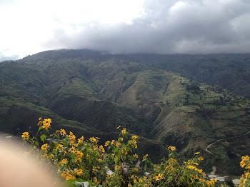 Haitian Mountains