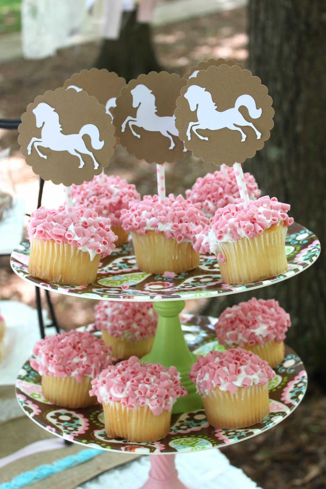 Belles 11th Birthday Vintage Tween Horse Party