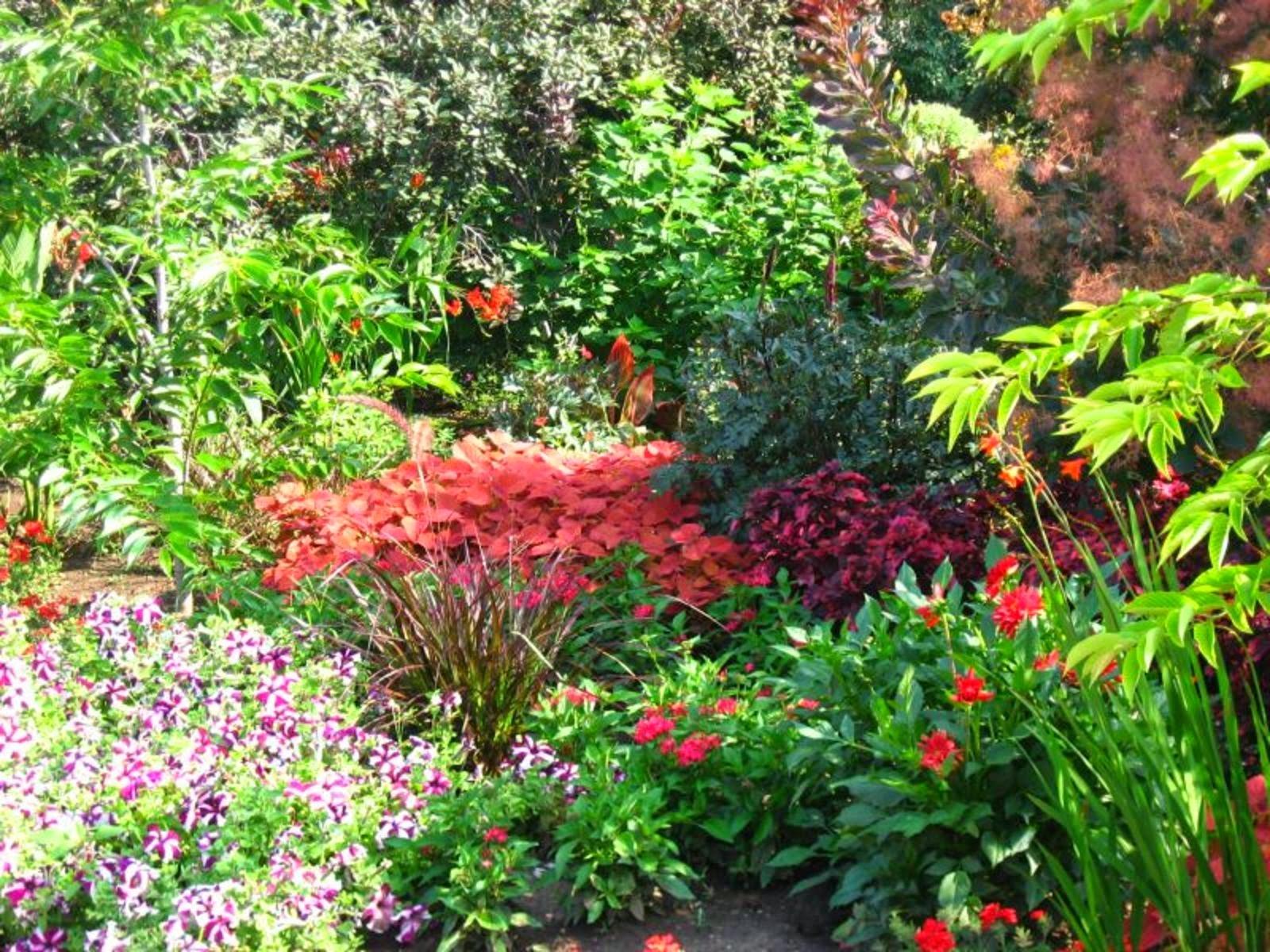3d flower garden wallpaper for Perennial garden pictures
