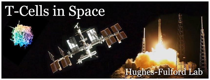 Hughes-Fulford Lab