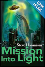 "Key chapter overviews: Points of interest in the novel ""Mission Into Light"""