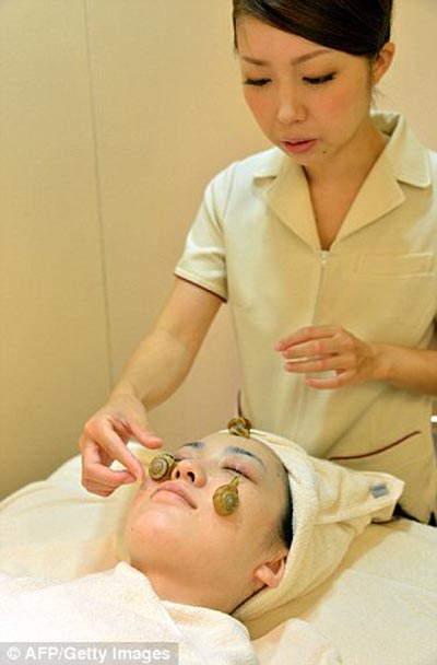 Perawatan Kecantikan Dengan lendir Siput