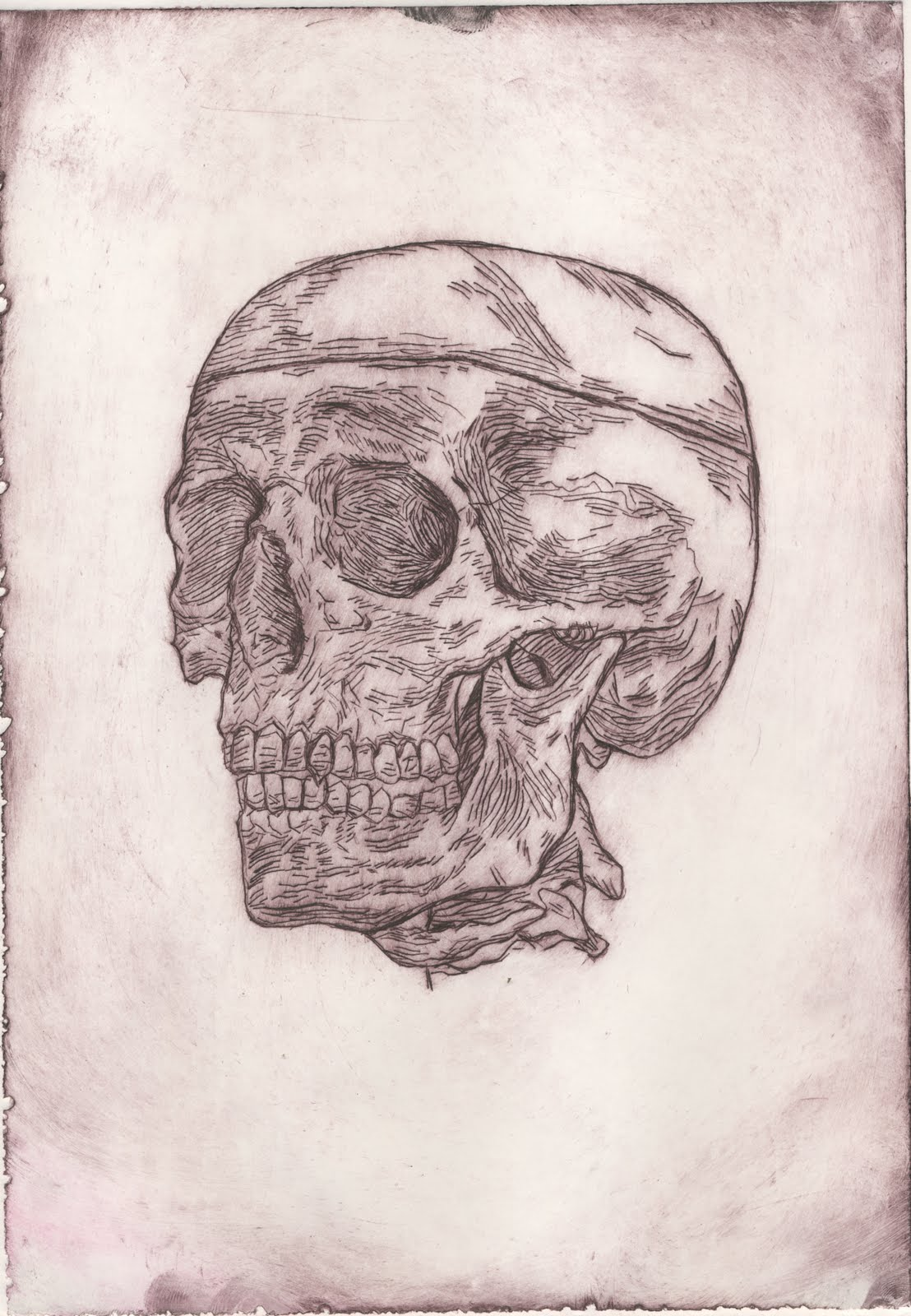 Vintage Child Skull Etching / Engraving by ViciousDelights