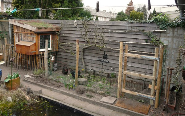 Huis tuin en keuken c biologische kippen houden in de stad for Huis hypotheekvrij maken