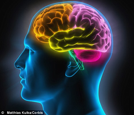 Scientists Claim Human Brain May Have Reached Full Capacity