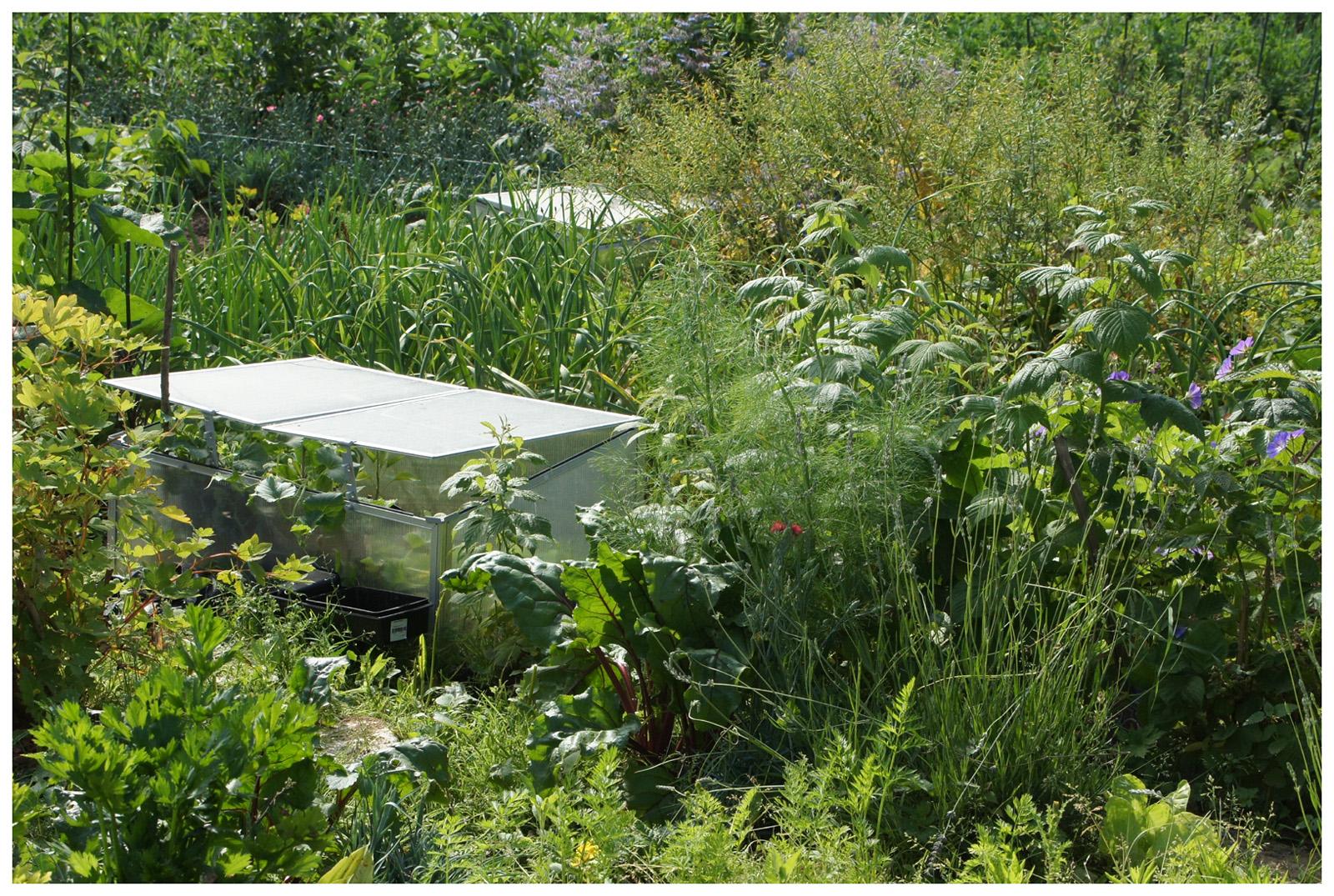 Cergipontin courdimanche val d 39 oise les jardins for Jardin ouvrier