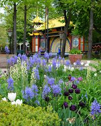 Smukke blomster i Tivoli