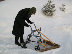 A  Senior Snow Plow