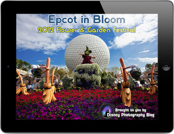 Epcot coupons and discounts