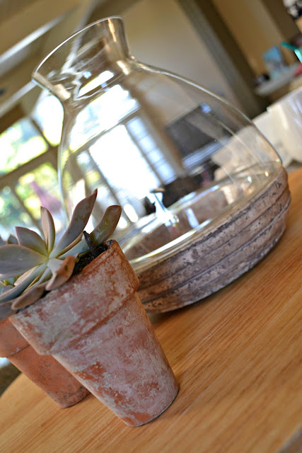 Mommy Testers me time with Bigelow vanilla chai tea and a DIY terrarium centerpiece #cbias
