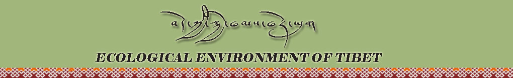 Ecological Environment of Tibet