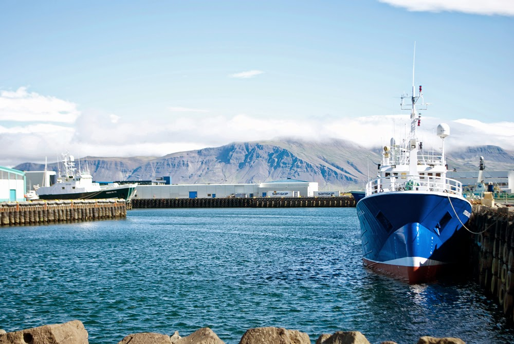 harbour in iceland