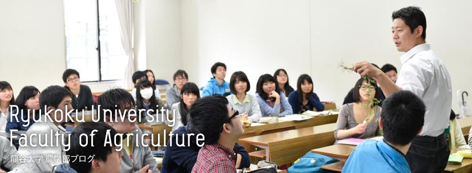 龍谷大学 農学部ブログ