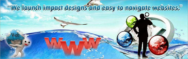 website designing company in Rohini sector 17, Website designing services in Rohini sec 17
