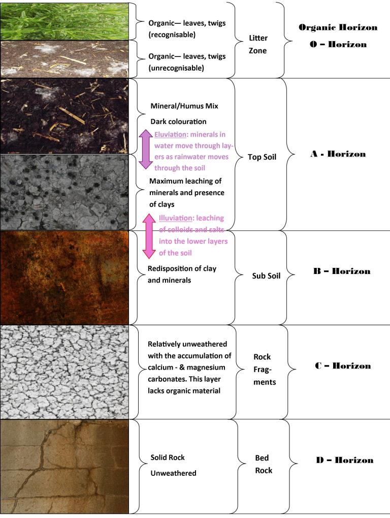 soil forming rocks and minerals pdf