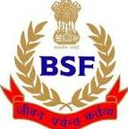 Www.bsf.nic.in BSF Head Constable Recruitment 2013 Redio Operator Application form Download www.davp.nic.in 430 Jobs
