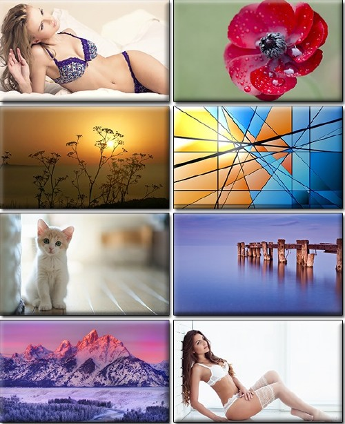 Computer Desktop Wallpapers Collection Part 1285